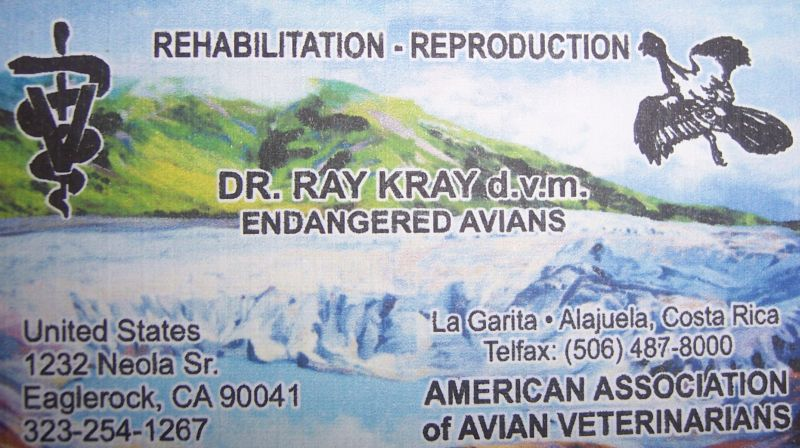 Dr Raymond Krays contact details